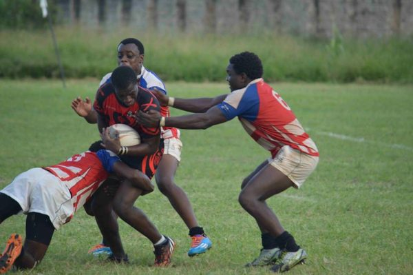 KRU Championship Week 12 Preview